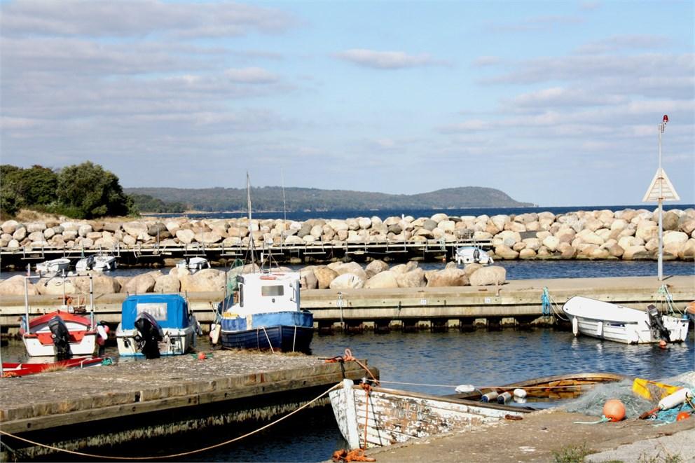 Baskemölla hamnm