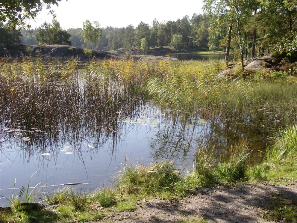 Lundasjön