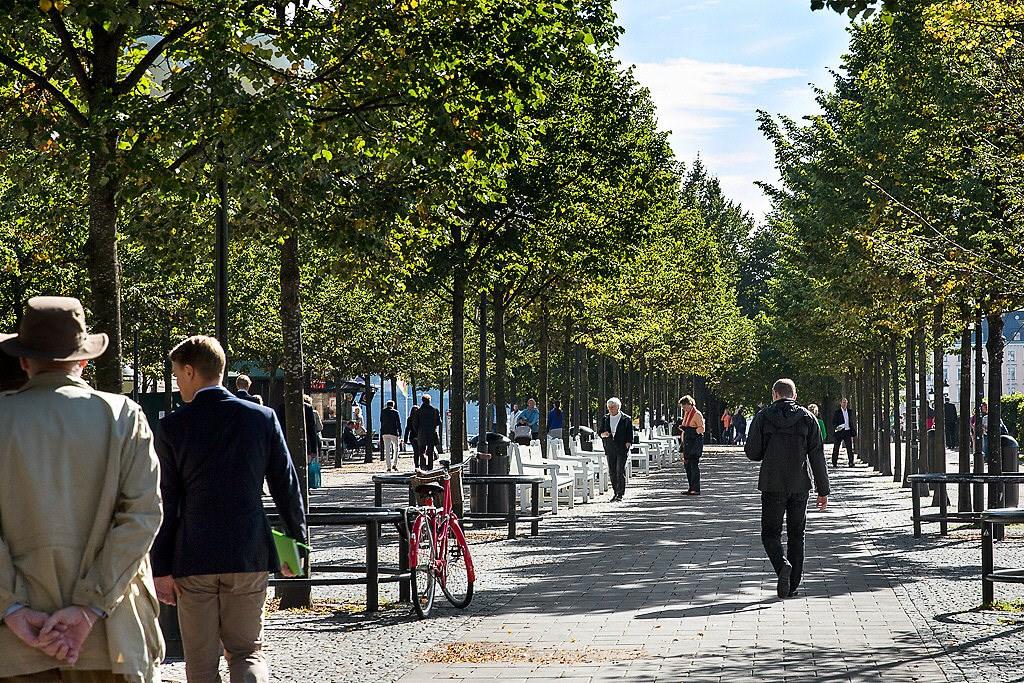 Området - Kungsträdgården