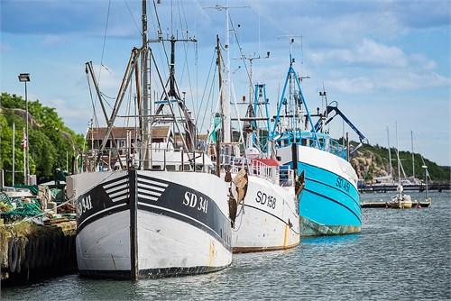 Grebbestad fiskebåtar