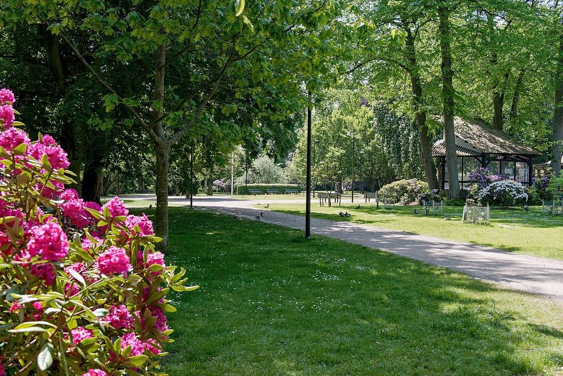 Ta en promenad eller löprunda i Norra Promenaden