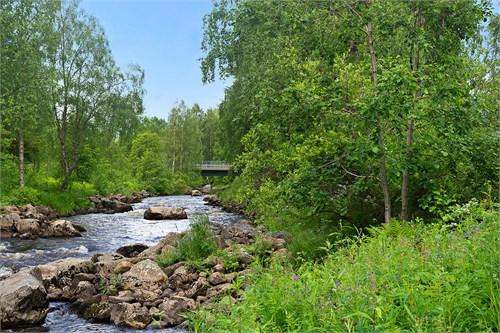 Bäck intill gården som rinner ner till Torneälv