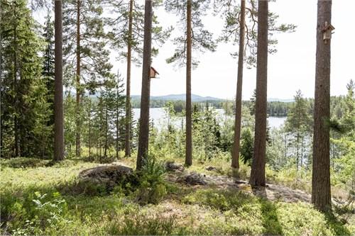 Utsikt mot Kättbosjön